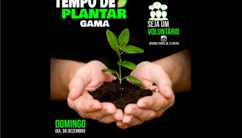 Movimento Social Tempo de Plantar