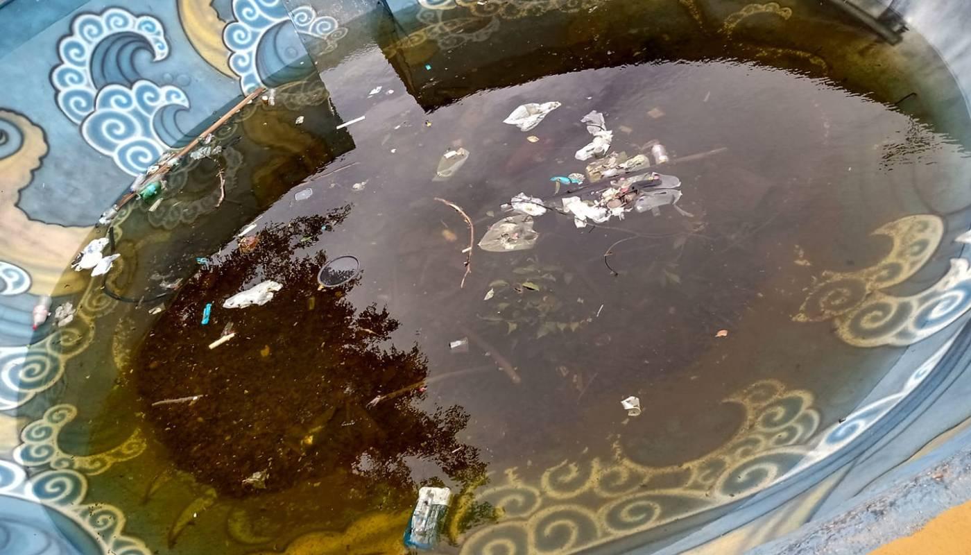 Prato cheio para a dengue: Morador flagra pista de skate bowl no Gama cheia de água após chuvas