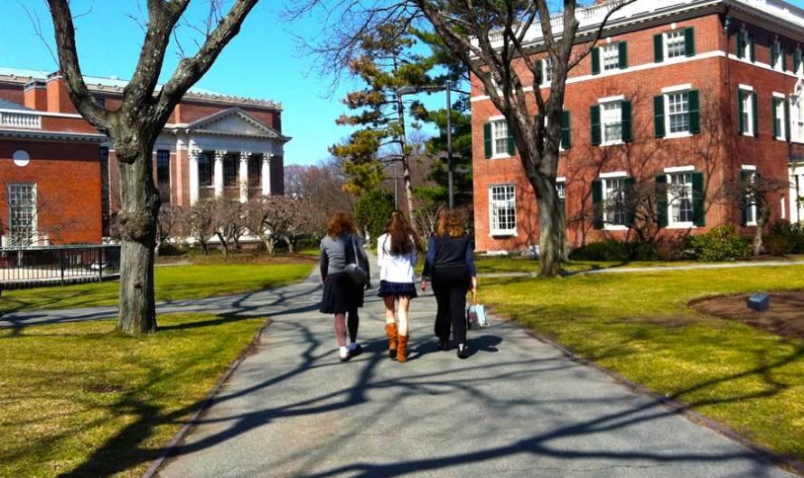 Harvard disponibiliza centenas de cursos gratuitos e on-line