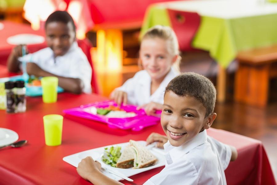 Sedentarismo e obesidade acentuam importância da educação alimentar para crianças