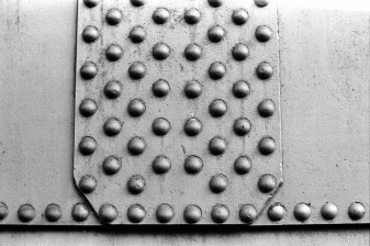Lomography Earl Grey 100