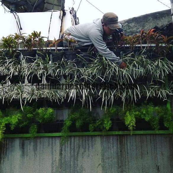 Jasa Taman di Bandung Vertical Garden Sistem Pot 1