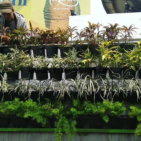 Jasa Taman di Bandung Vertical Garden Sistem Pot 2