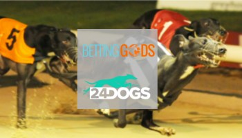 Betting Gods Ltd and Void Ltd announce partnership and plans