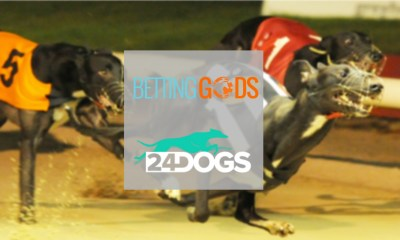 BettingGods partners with 24Dogs