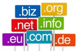 domain signs