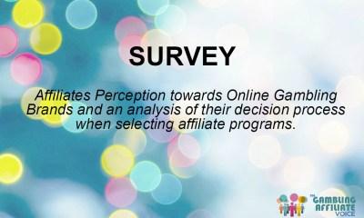 Affiliate Survey