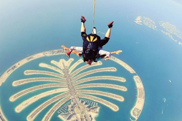 sky diving palm