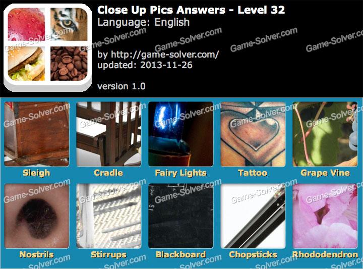 Close Up Pics Level 32 - Game Solver