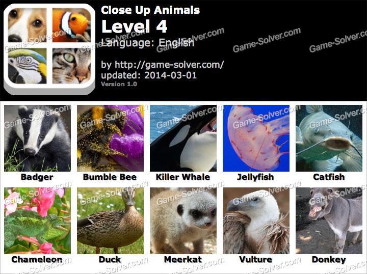 Close Up Animals Level 4