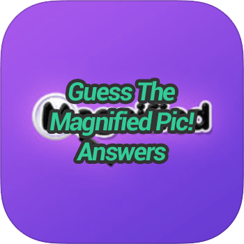 Guess The Magnified Pic Answers