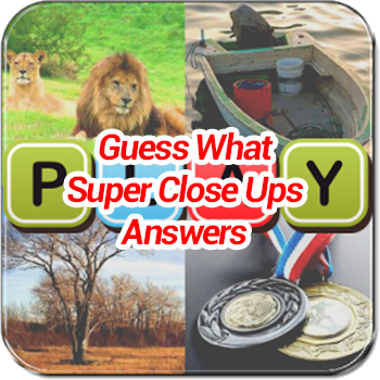 Guess What Super Close Ups Answers