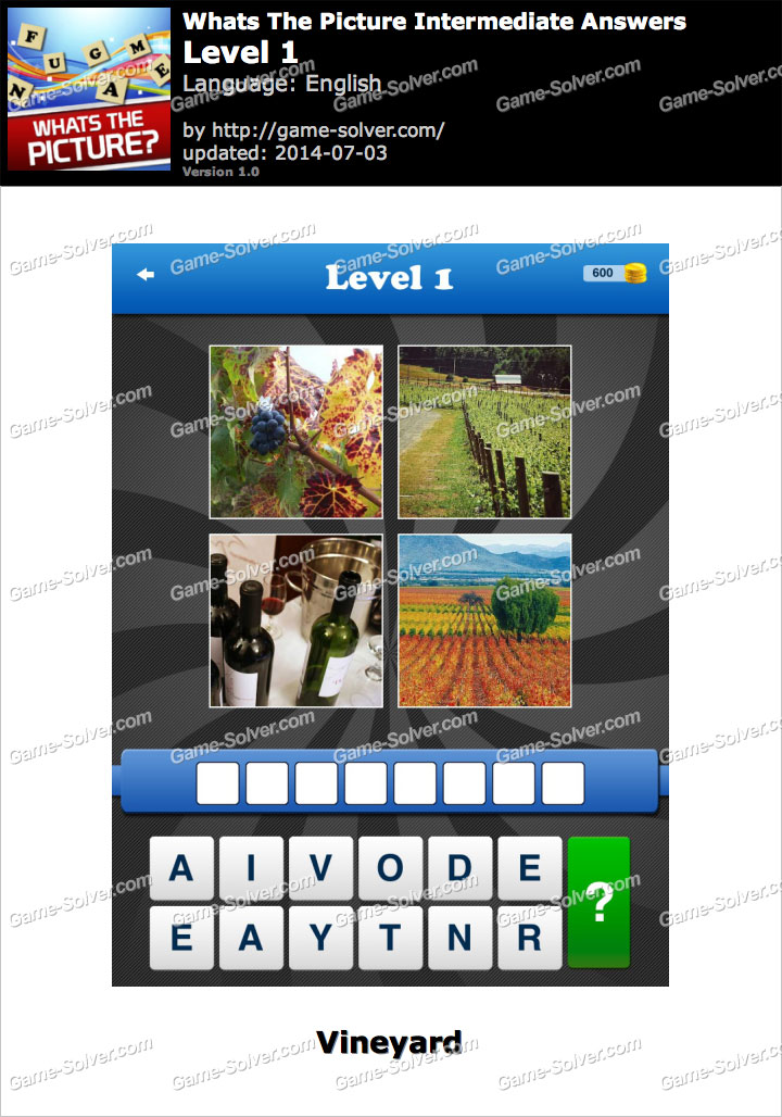 Whats The Picture Intermediate Level 1