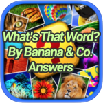 What's That Word Banana Co Answers