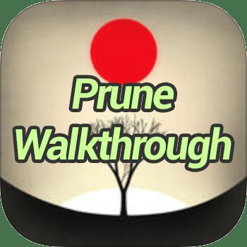Prune Walkthrough