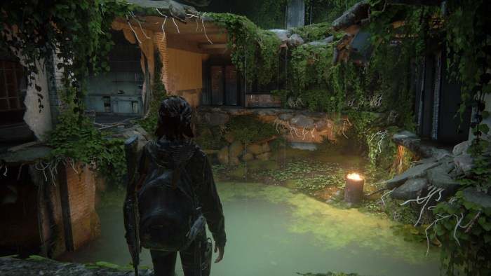 The Last of Us™ Part II_20200604214921