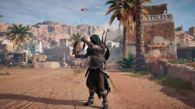 Assassin creed origins secret senu action