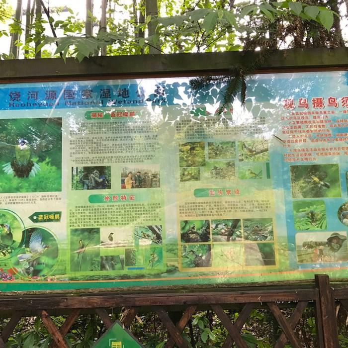 Raoheyuan National Wetland Park