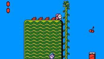 Inside the Guide: Super Mario Bros  2 – GameCola