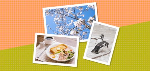 ブログに貼るイメージ写真に便利な画像素材配布サイトまとめ