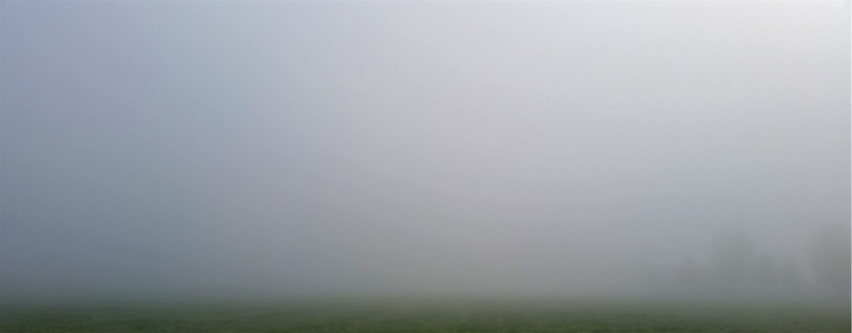 """Image result for fog covered fields images"""""""