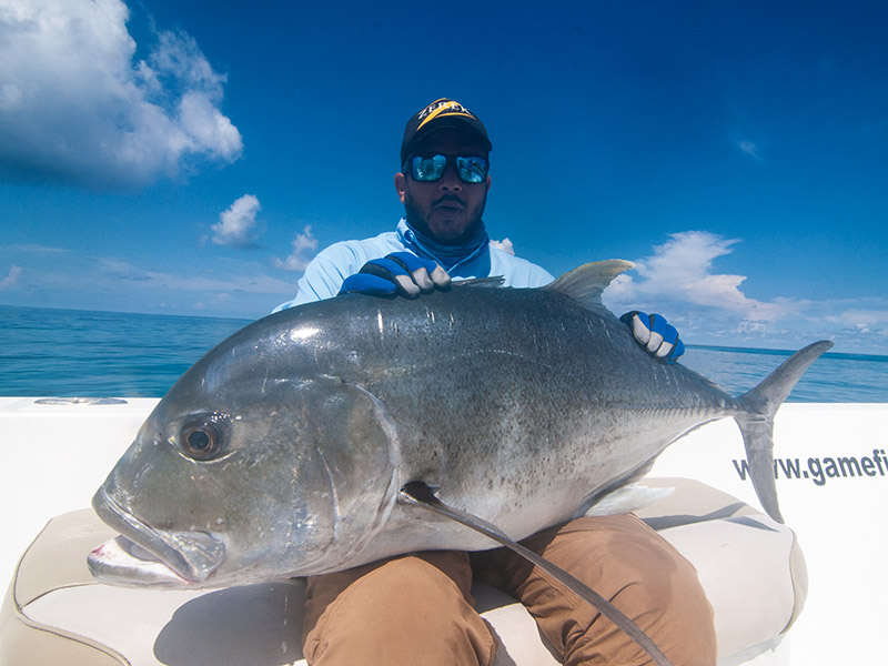 giant-trevally_popping_andaman_ripple-fisher-rod_shimano-stella-reels_kokari-popper_prateek