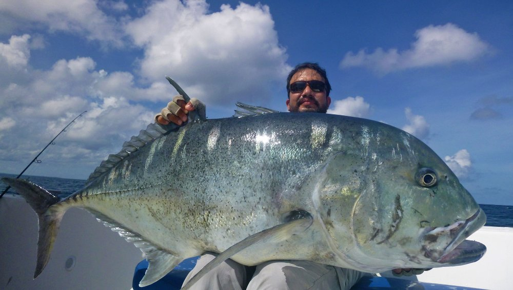 no-12_giant-trevally_fishing_popping_andaman_shimano-stella_gamefishingasia_boat_big-fish_48kg