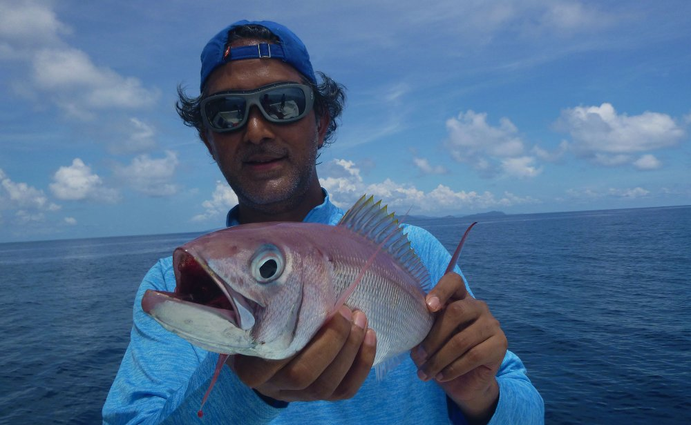 no-17_rusty-jobfish_fishing_jgging_andaman_shimano-stella_gamefishingasia_boat_big-fish