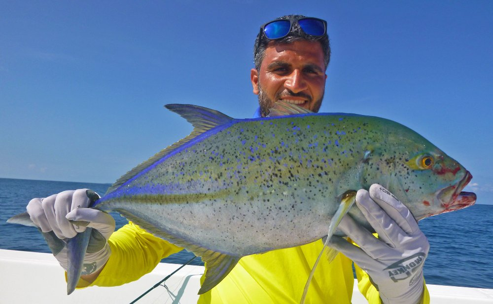 no-23_bluefin-trevally_fishing_jigging_andaman_shimano-stella_gamefishingasia_boat_big-fish_0