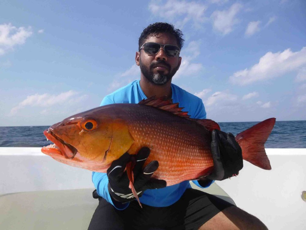red-snapper_popping_andaman_race-point-rod_shimano-saragosa-reels_kokari-popper_vijooke