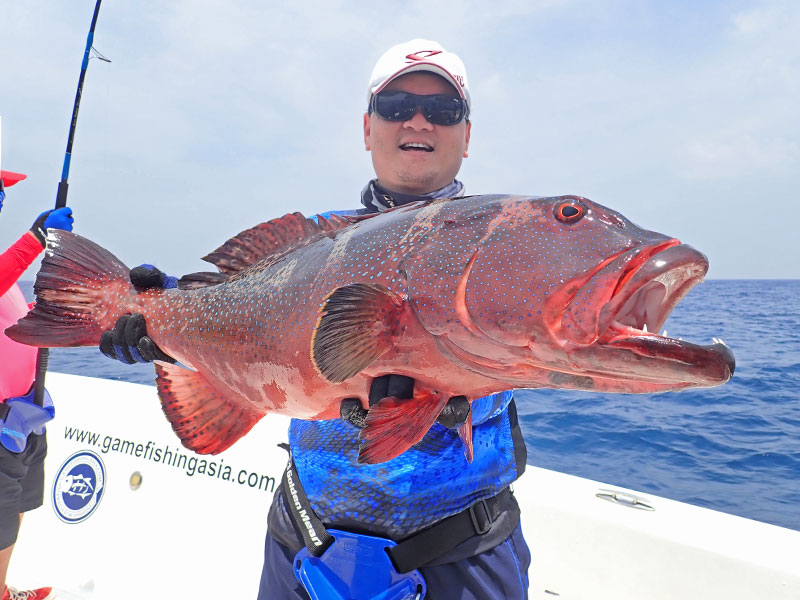 19_coral-trout_popping_andamans_fishing_shimano-stella-reels_carpenter-rods_blaze-garage-lures-alwyn-tan
