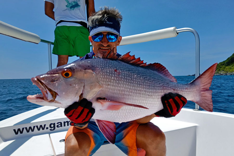 grouper_jigging_andaman_fcl-labo-rod_daiwa-saltiga-5500h-reel_patriot-design-lure_loic