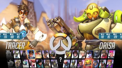 Overwatch Fighting Game