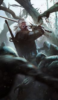 the-witcher-7