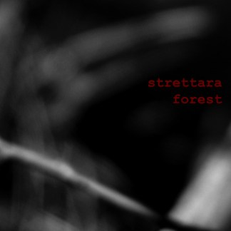 Strettara - Forest | http://bit.ly/GoL-Lif19