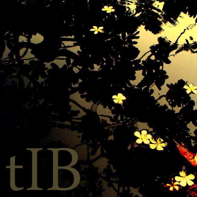 tIB - Impressions, Pixelated | http://bit.ly/GoL-Lif18