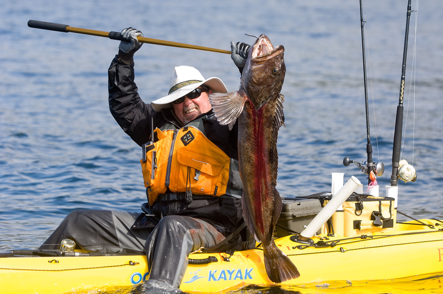 Ling Cod kayak fishing in Alaska