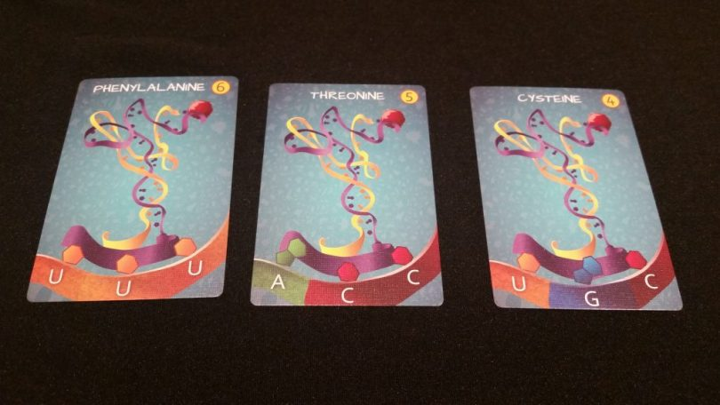 A few Amino Acid cards. Each is worth either 4,5,or 6 points, based on the number of common RNA cards needed to fulfill their requirements (on the bottom)