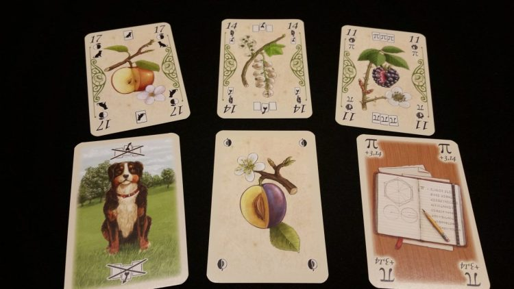 Special cards - examples of the Dog, Steal, and Pi cards, as well as the symbols that go along with them. Plums can only be gotten by picking last in a trick.