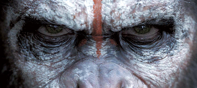 El planeta de los simios Confrontacion  (2)