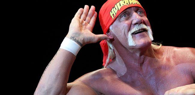 Hulk Hogan (1)