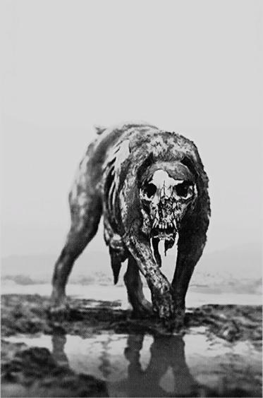 Hellhound Official Hunt Showdown Wiki