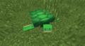 海龜 - Minecraft Wiki,最詳細的官方我的世界百科
