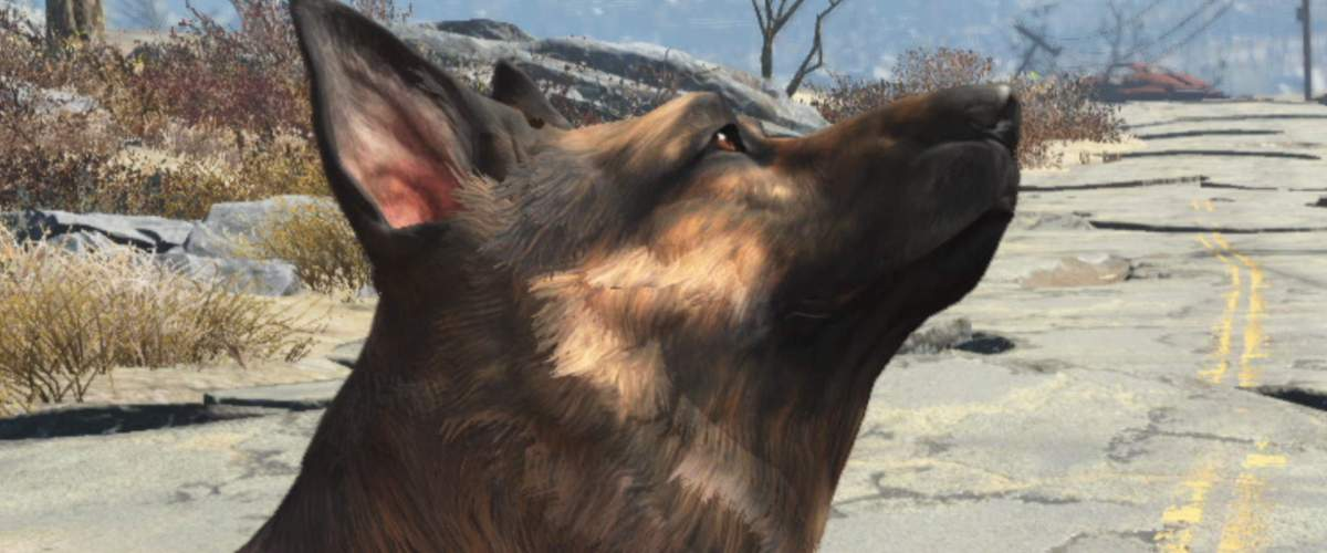 Fallout 76 could be receiving pets, Dogmeat lovers rejoice