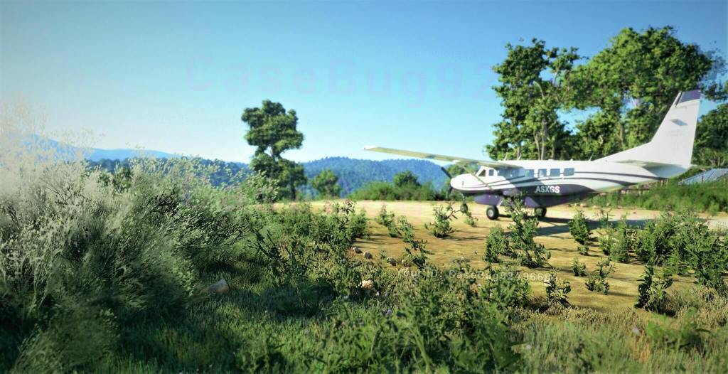 Microsoft Flight Simulator pens in July 30 for closed beta launch