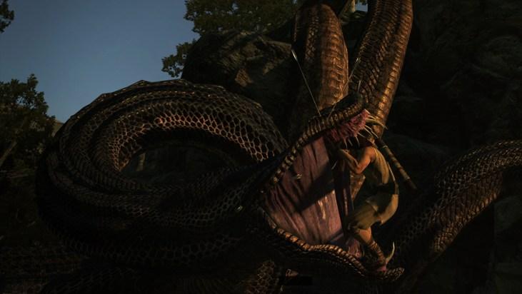 DragonsDogmaclimbing