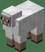 150px-White_Sheep