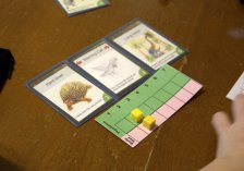 What was played: Evolution Who played it: Neighbors Why: Prototype review for Kickstarter campaign +1 GeekMom rolls: Review will be coming this week on GeekMom.