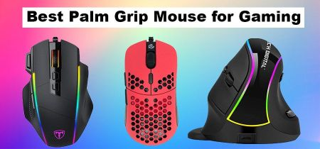 10 Best Palm Grip Mouse for Gaming in 2021