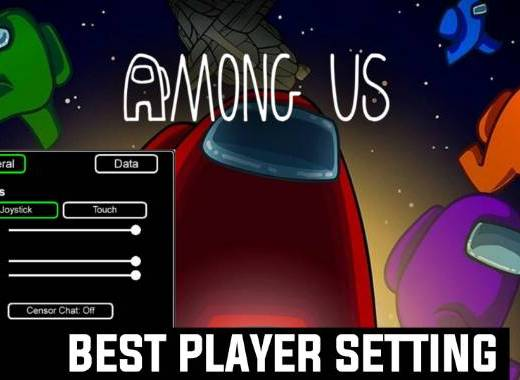 Best Player Setting to use in Among Us